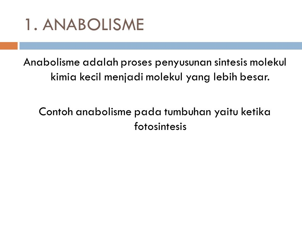 1. ANABOLISME