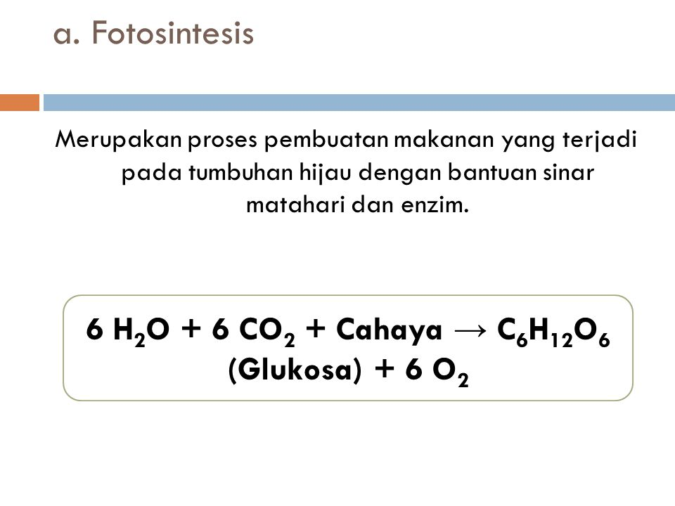 6 H2O + 6 CO2 + Cahaya → C6H12O6 (Glukosa) + 6 O2