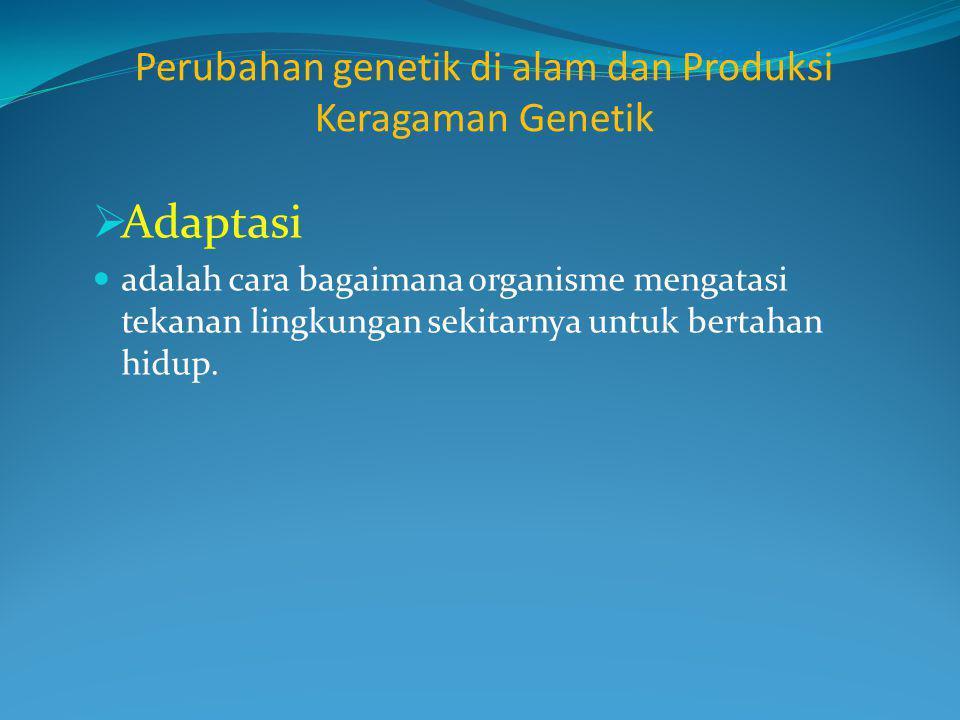 Perubahan genetik di alam dan Produksi Keragaman Genetik