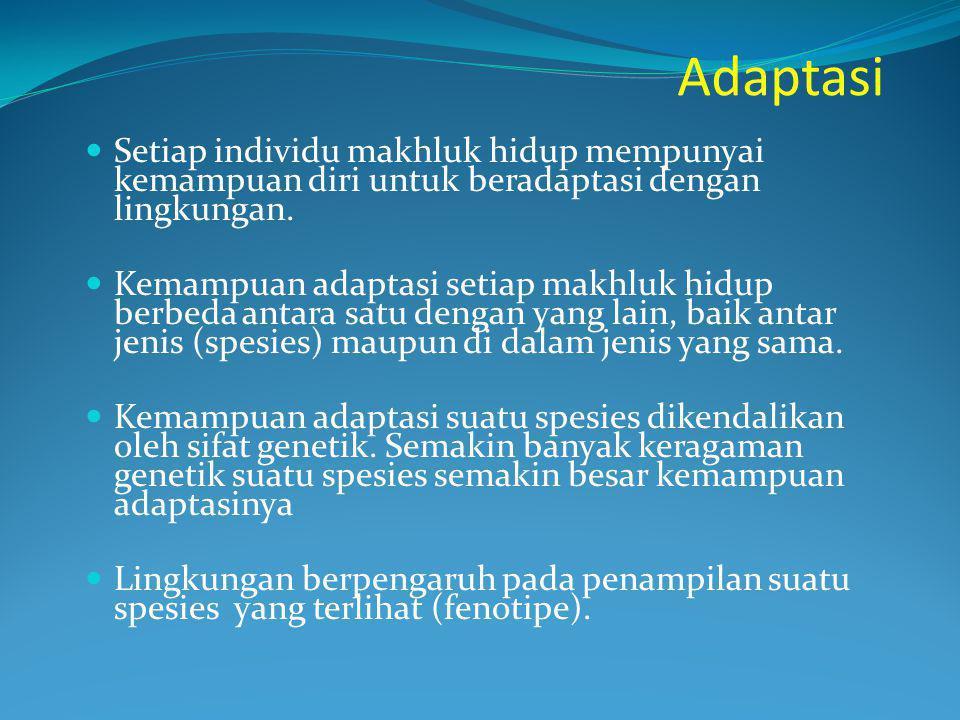 Adaptasi Setiap individu makhluk hidup mempunyai kemampuan diri untuk beradaptasi dengan lingkungan.