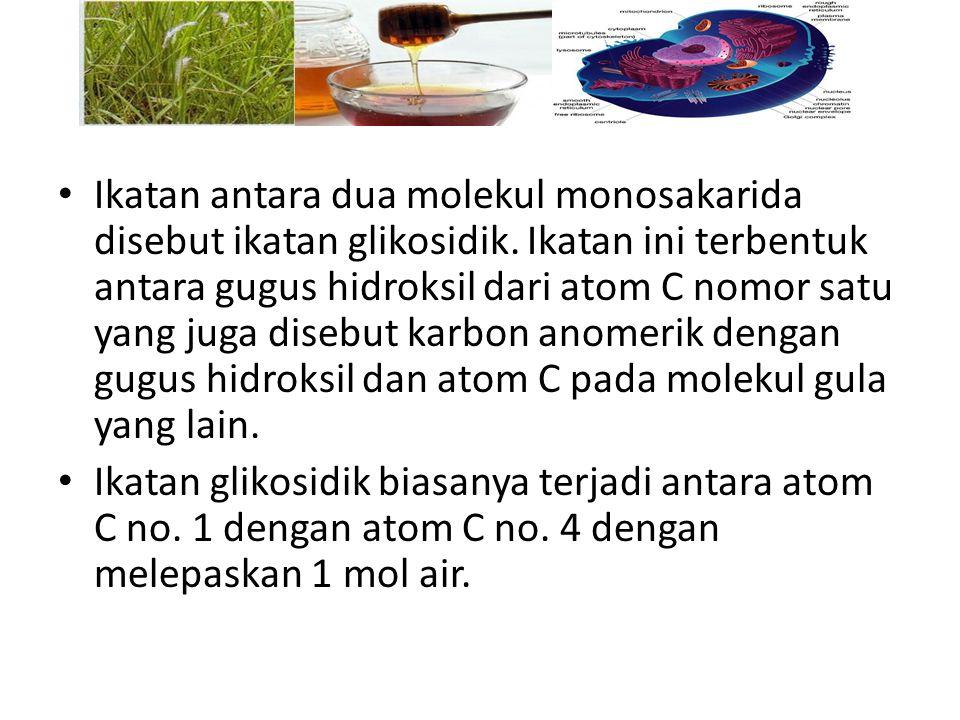 Ikatan antara dua molekul monosakarida disebut ikatan glikosidik