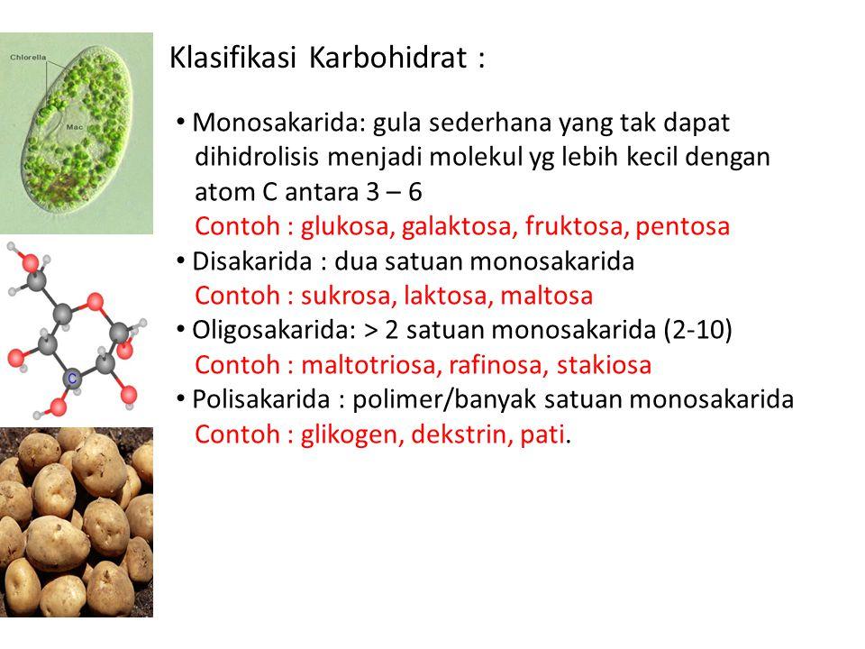 Klasifikasi Karbohidrat :