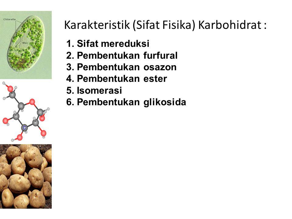 Karakteristik (Sifat Fisika) Karbohidrat :