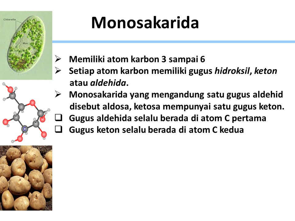 Monosakarida Memiliki atom karbon 3 sampai 6