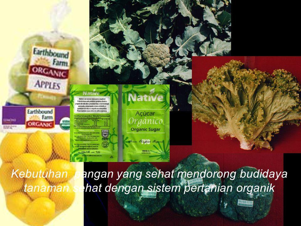 Kebutuhan pangan yang sehat mendorong budidaya tanaman sehat dengan sistem pertanian organik