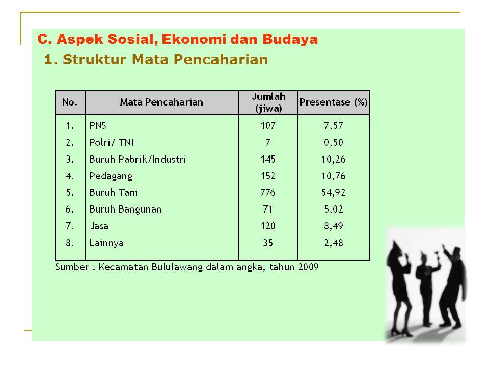 C. Aspek Sosial, Ekonomi dan Budaya