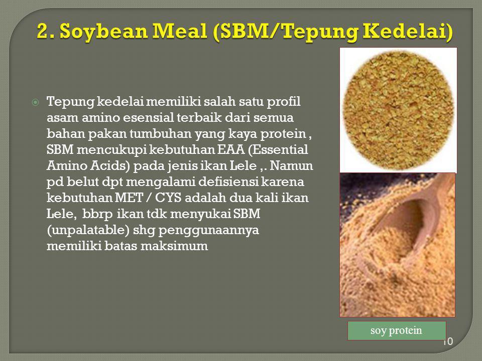 2. Soybean Meal (SBM/Tepung Kedelai)