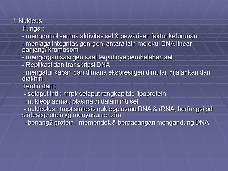 i. Nukleus Fungsi : - mengontrol semua aktivitas sel & pewarisan faktor keturunan.