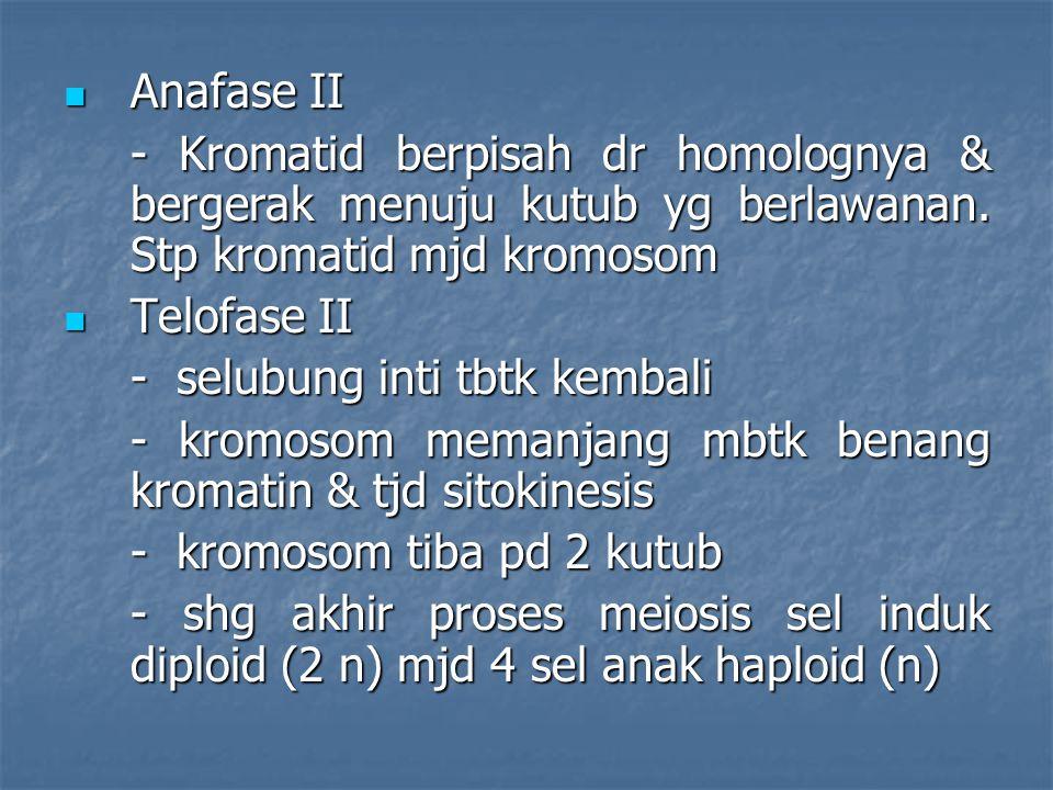 Anafase II - Kromatid berpisah dr homolognya & bergerak menuju kutub yg berlawanan. Stp kromatid mjd kromosom.