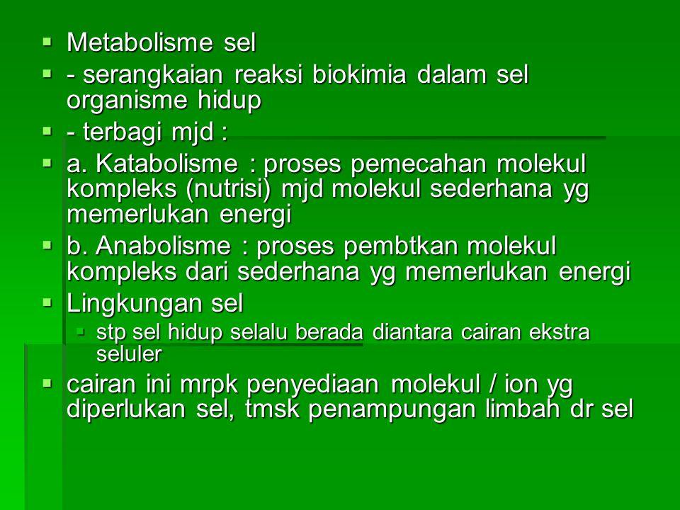 - serangkaian reaksi biokimia dalam sel organisme hidup