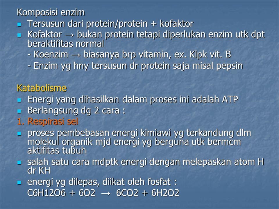 Komposisi enzim Tersusun dari protein/protein + kofaktor. Kofaktor → bukan protein tetapi diperlukan enzim utk dpt beraktifitas normal.
