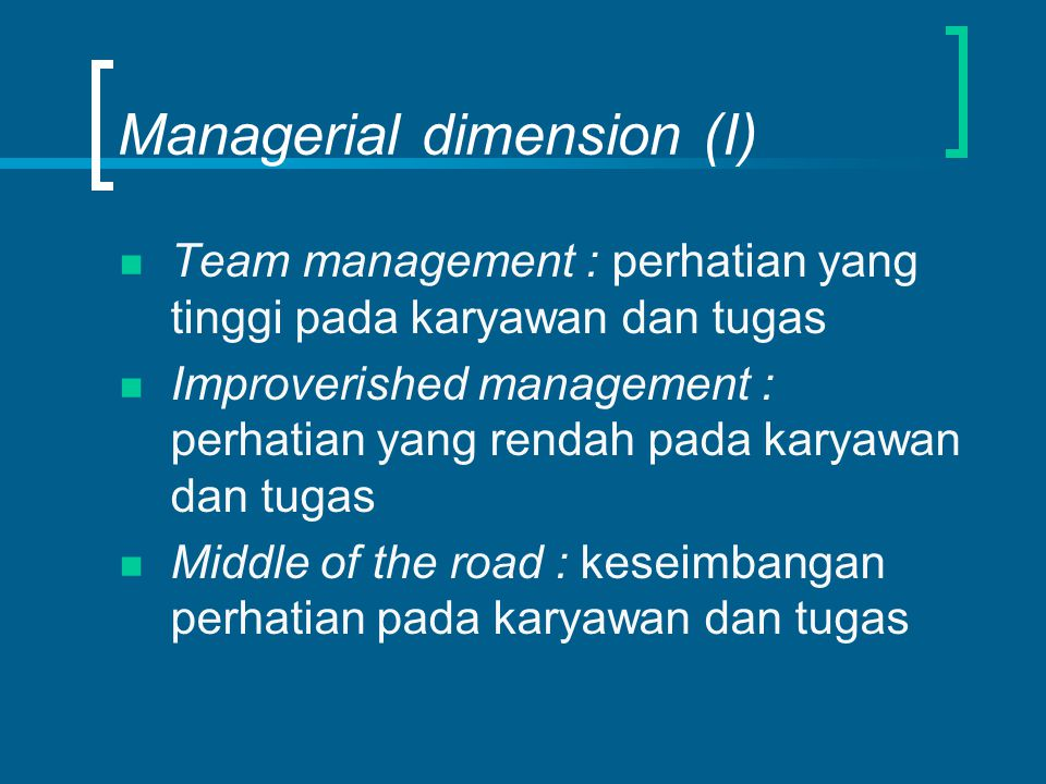 Managerial dimension (I)