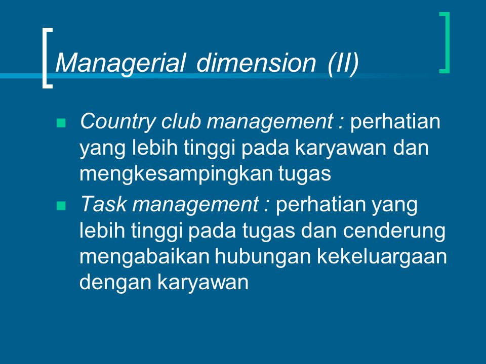 Managerial dimension (II)