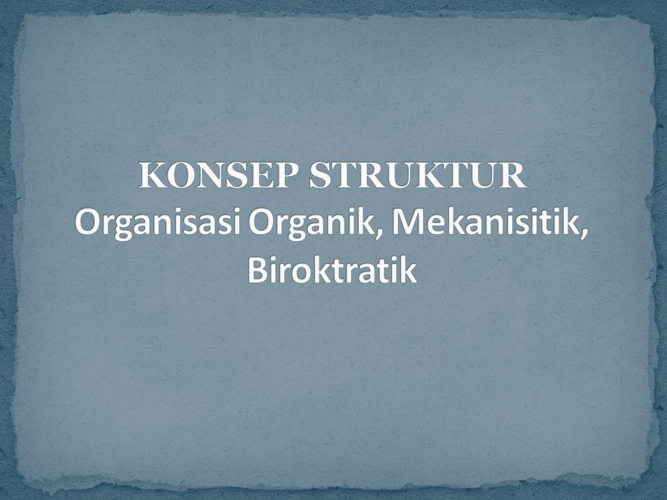 KONSEP STRUKTUR Organisasi Organik, Mekanisitik, Biroktratik