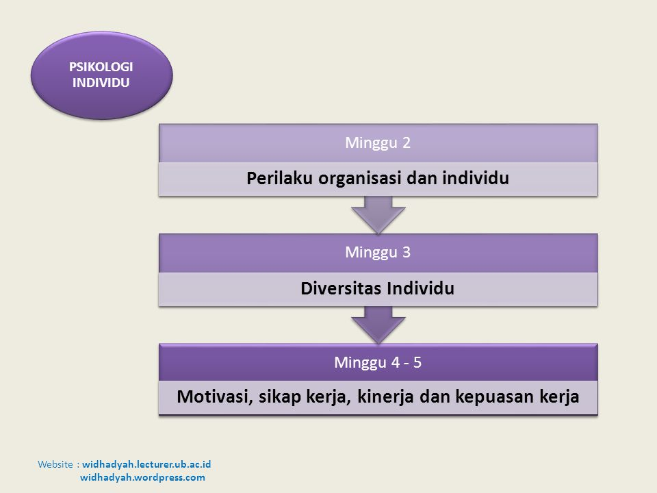 PSIKOLOGI INDIVIDU Minggu 2 Perilaku organisasi dan individu Minggu 3
