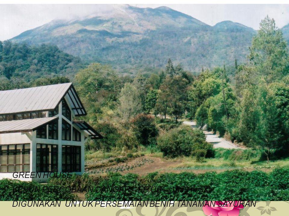 GREEN HOUSE KEBUN PERCOBAAN CANGAR – FP UB – 1650 m asl.