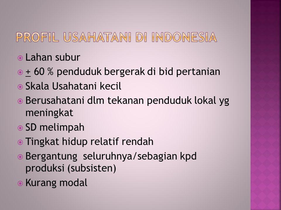 Profil usahatani di indonesia