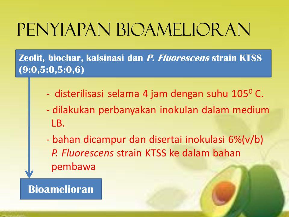 Penyiapan bioamelioran