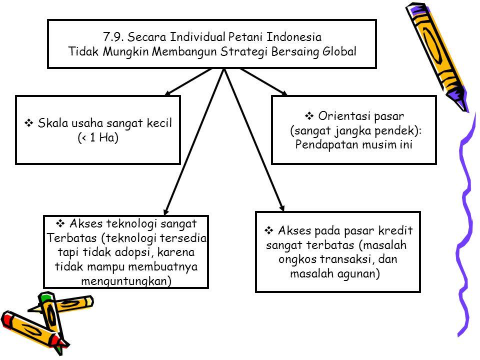 7.9. Secara Individual Petani Indonesia
