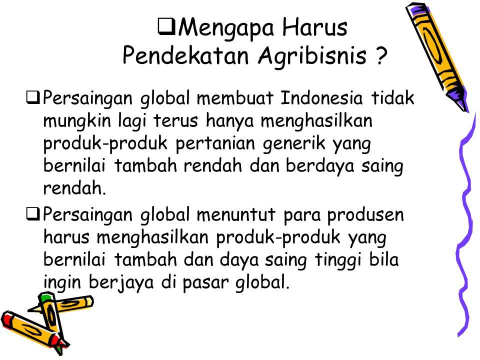 Mengapa Harus Pendekatan Agribisnis