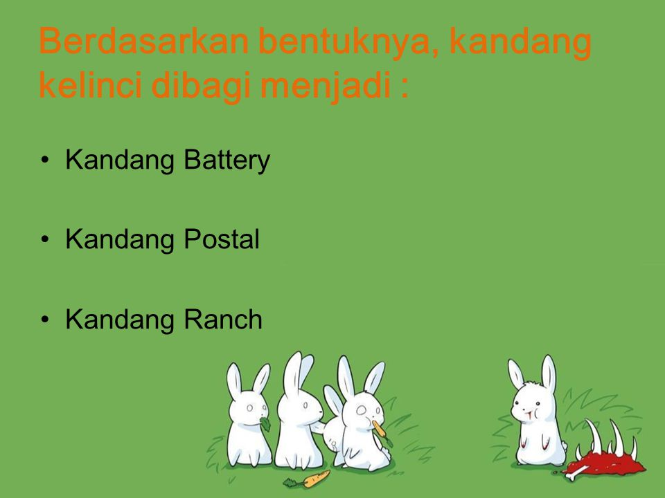 Berdasarkan bentuknya, kandang kelinci dibagi menjadi :