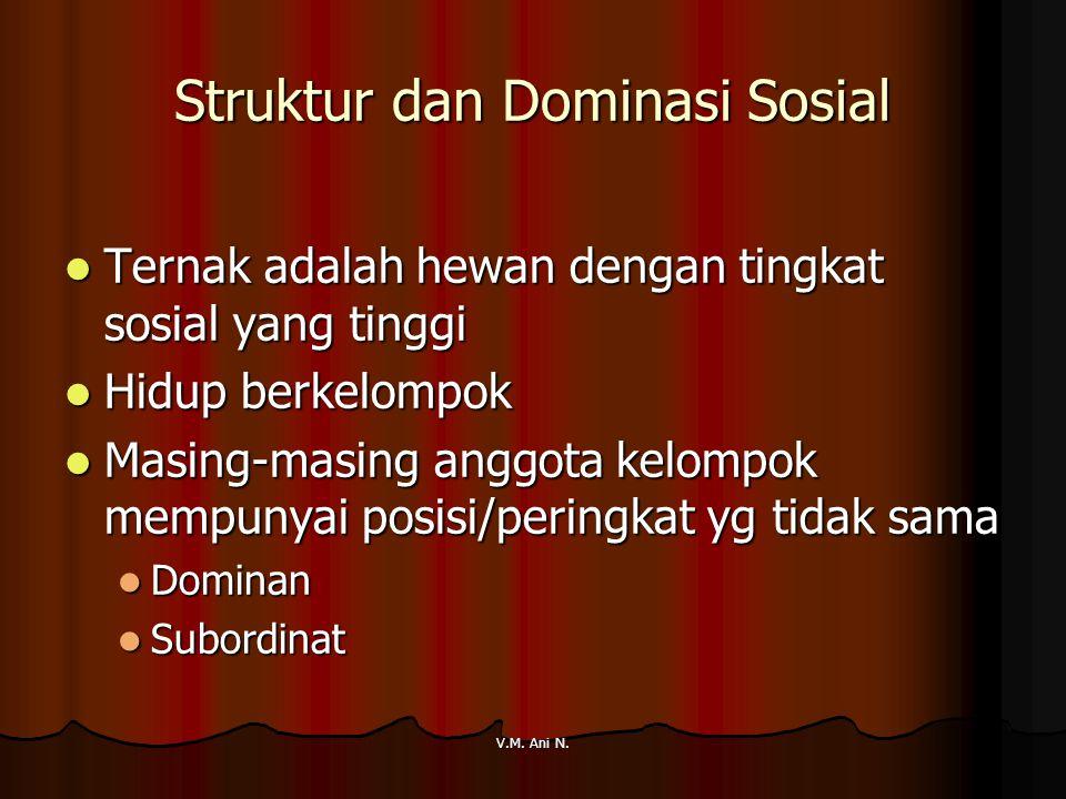 Struktur dan Dominasi Sosial