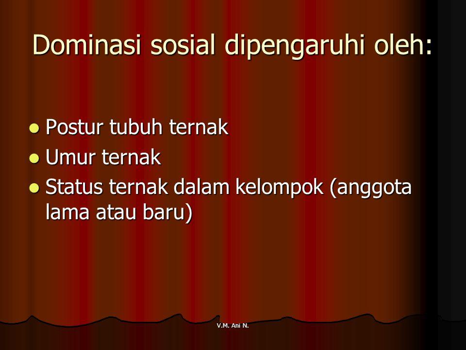 Dominasi sosial dipengaruhi oleh: