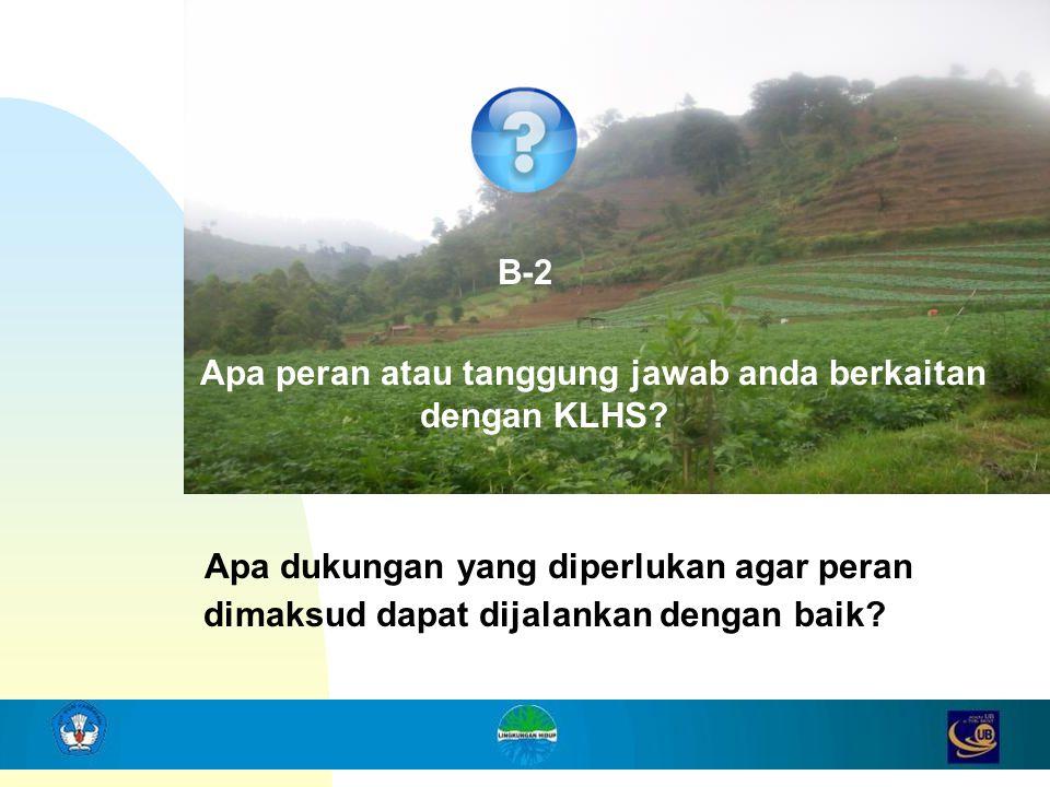 B-2 Apa peran atau tanggung jawab anda berkaitan dengan KLHS
