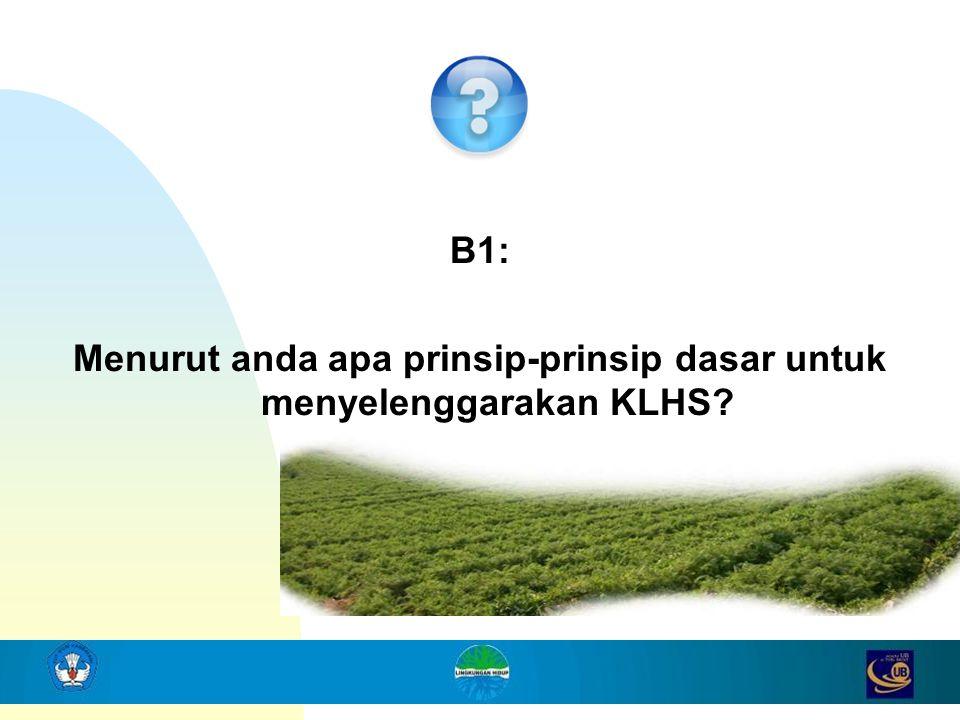 B1: Menurut anda apa prinsip-prinsip dasar untuk menyelenggarakan KLHS