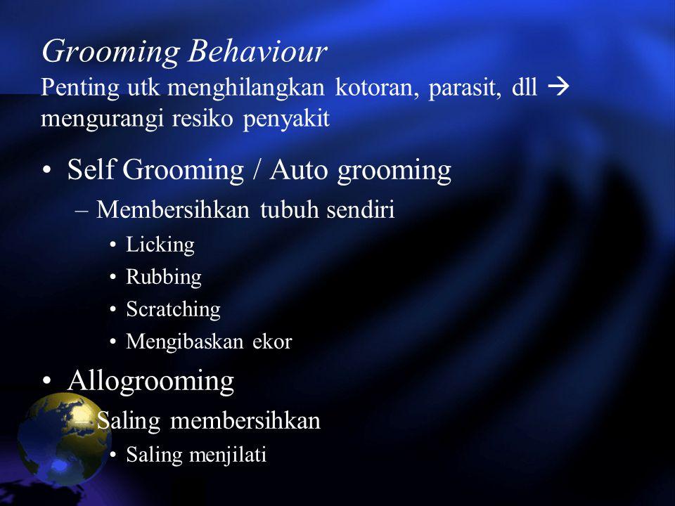 Grooming Behaviour Penting utk menghilangkan kotoran, parasit, dll  mengurangi resiko penyakit