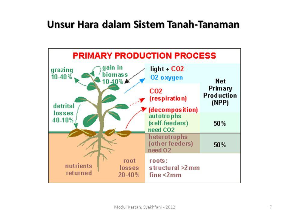 Unsur Hara dalam Sistem Tanah-Tanaman