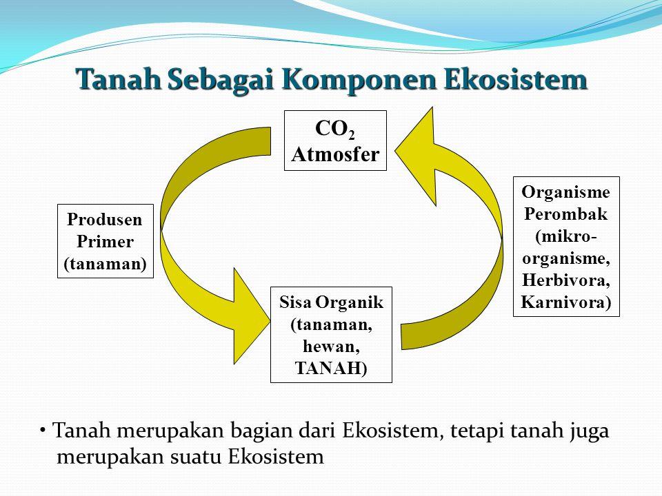 Tanah Sebagai Komponen Ekosistem
