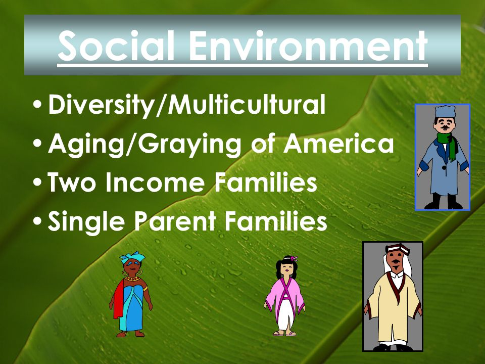 Social Environment Diversity/Multicultural Aging/Graying of America