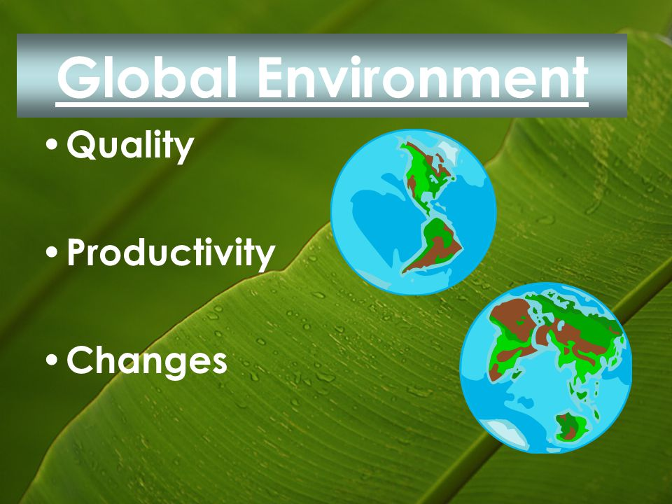 Global Environment Quality Productivity Changes