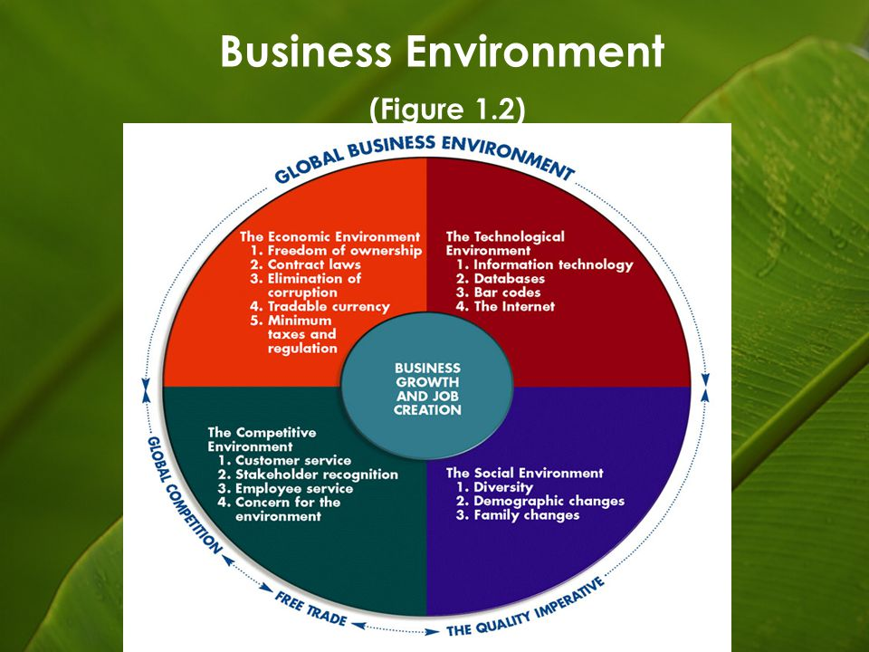 diversed environment Energy & environment diverse backgrounds and personalities can strengthen groups human resource executives say that diversity in the workplace.