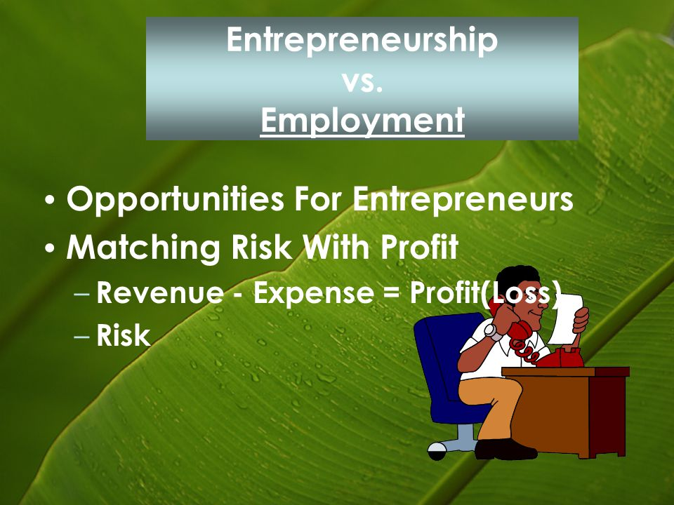 Entrepreneurship vs. Employment