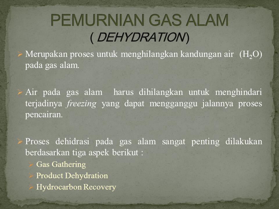 PEMURNIAN GAS ALAM ( DEHYDRATION )