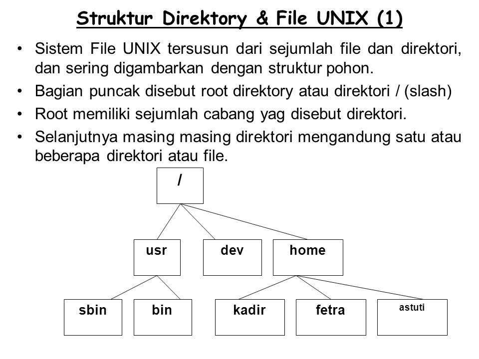 Struktur Direktory & File UNIX (1)