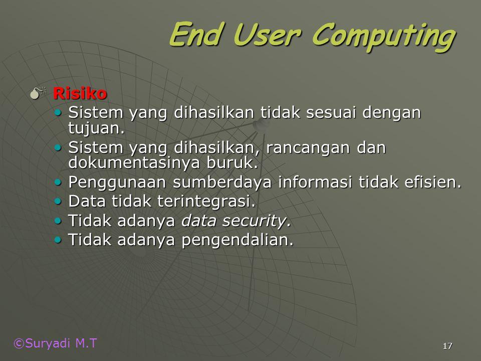 End User Computing Risiko