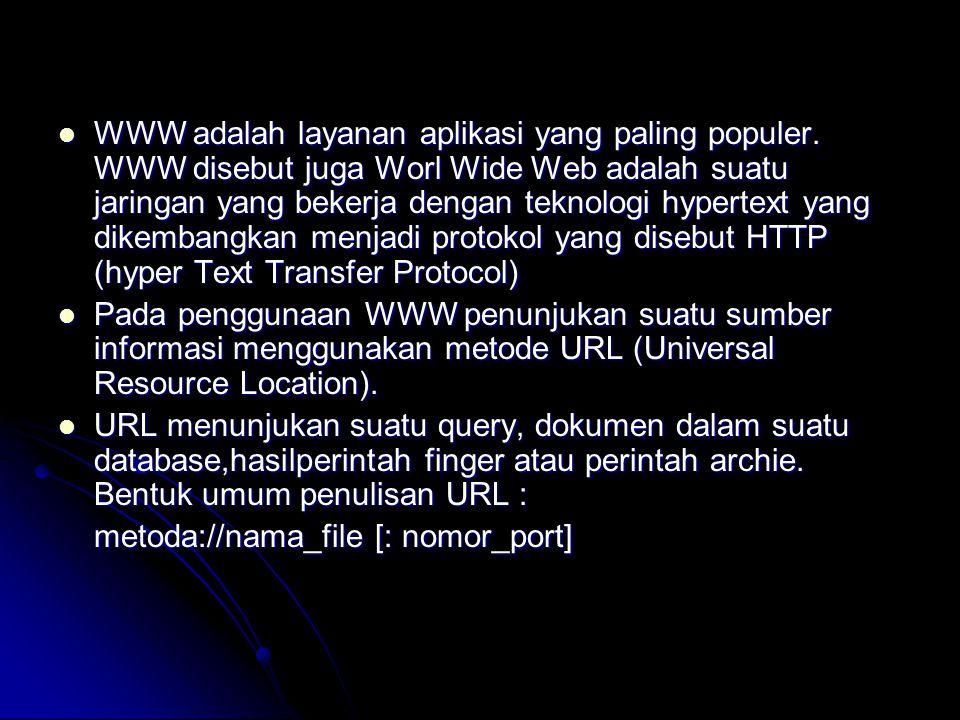 WWW adalah layanan aplikasi yang paling populer