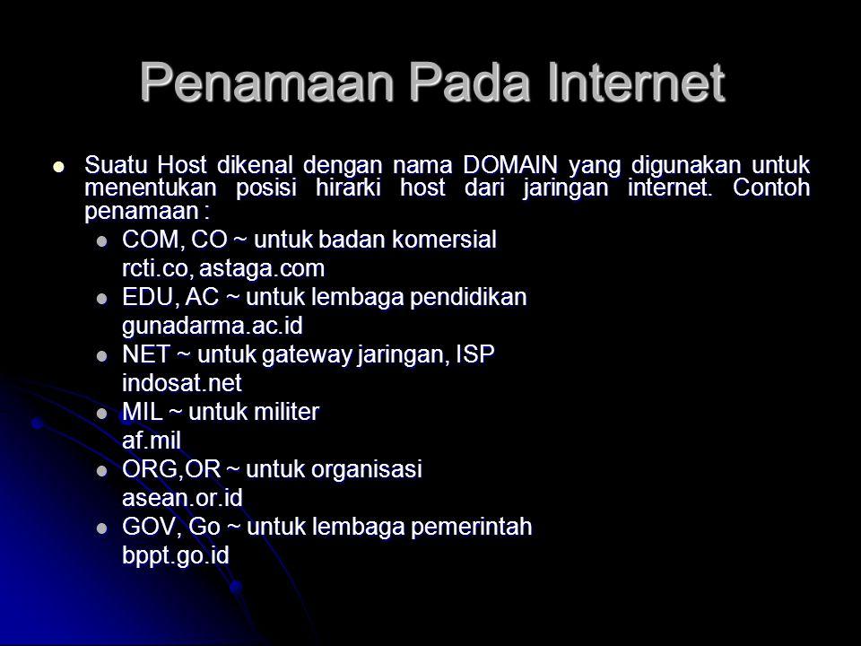 Penamaan Pada Internet