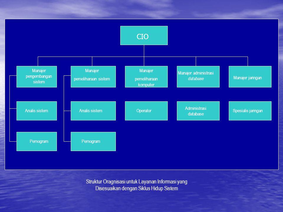 CIO Manajer pengembangan sistem. Manajer. pemeliharaan sistem. Manajer. pemeliharaan komputer. Manajer administrasi database.