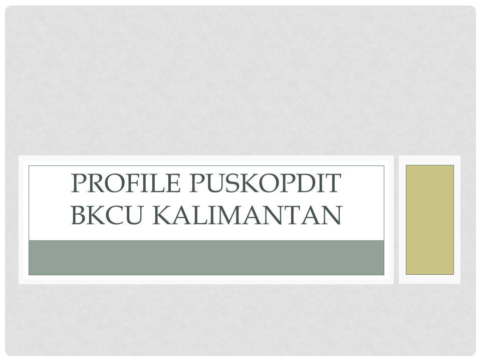 Profile Puskopdit bkcu kalimantan