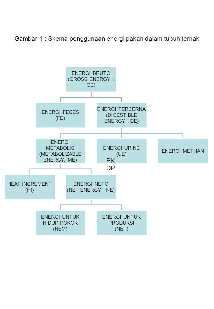Gambar 1 : Skema penggunaan energi pakan dalam tubuh ternak
