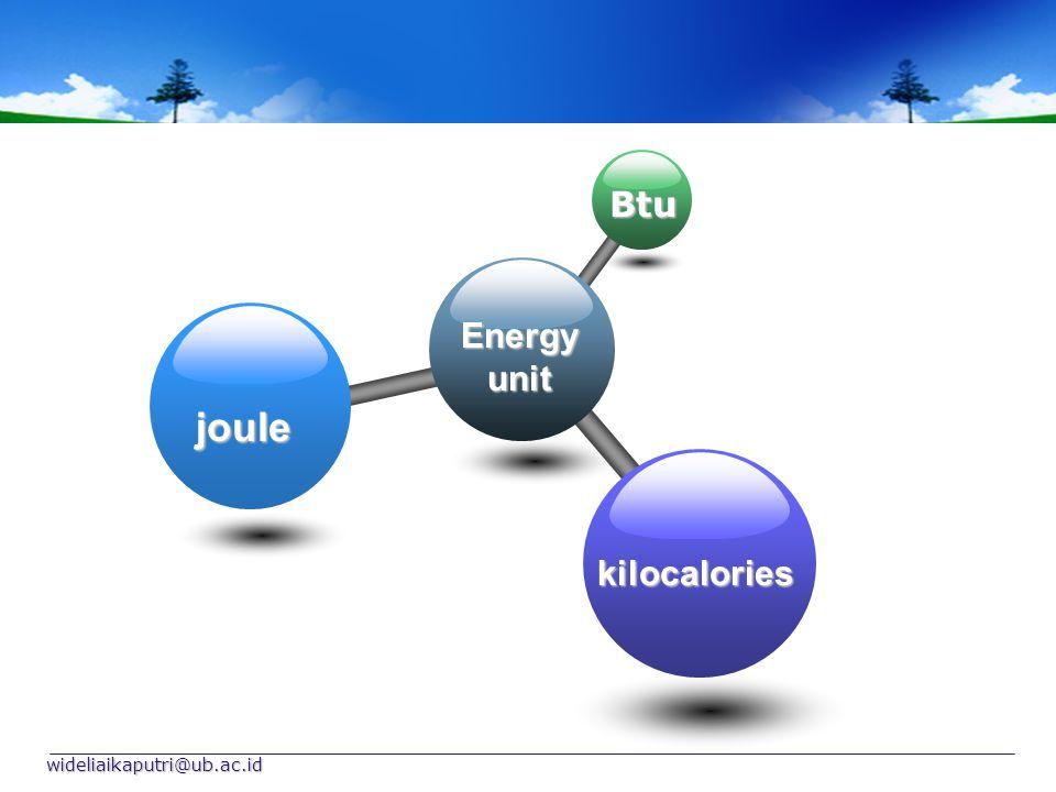 Energy unit Btu joule kilocalories wideliaikaputri@ub.ac.id