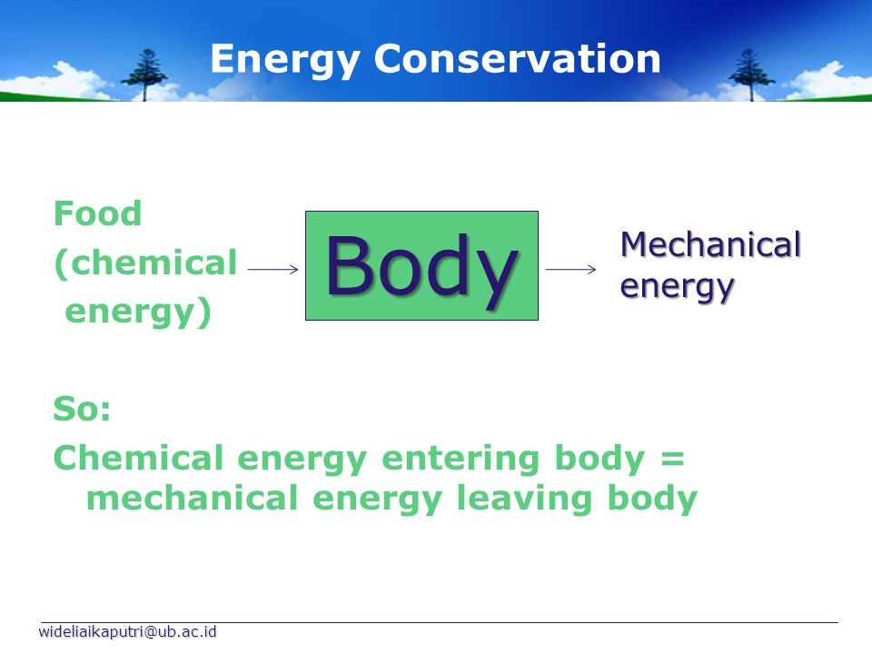 Body Energy Conservation