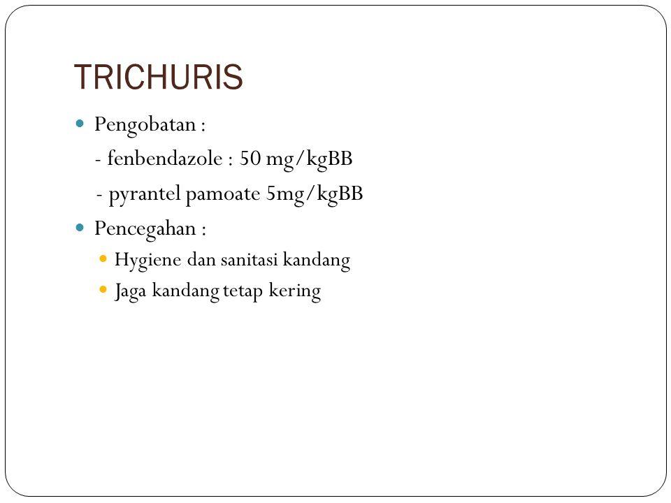 TRICHURIS Pengobatan : - fenbendazole : 50 mg/kgBB