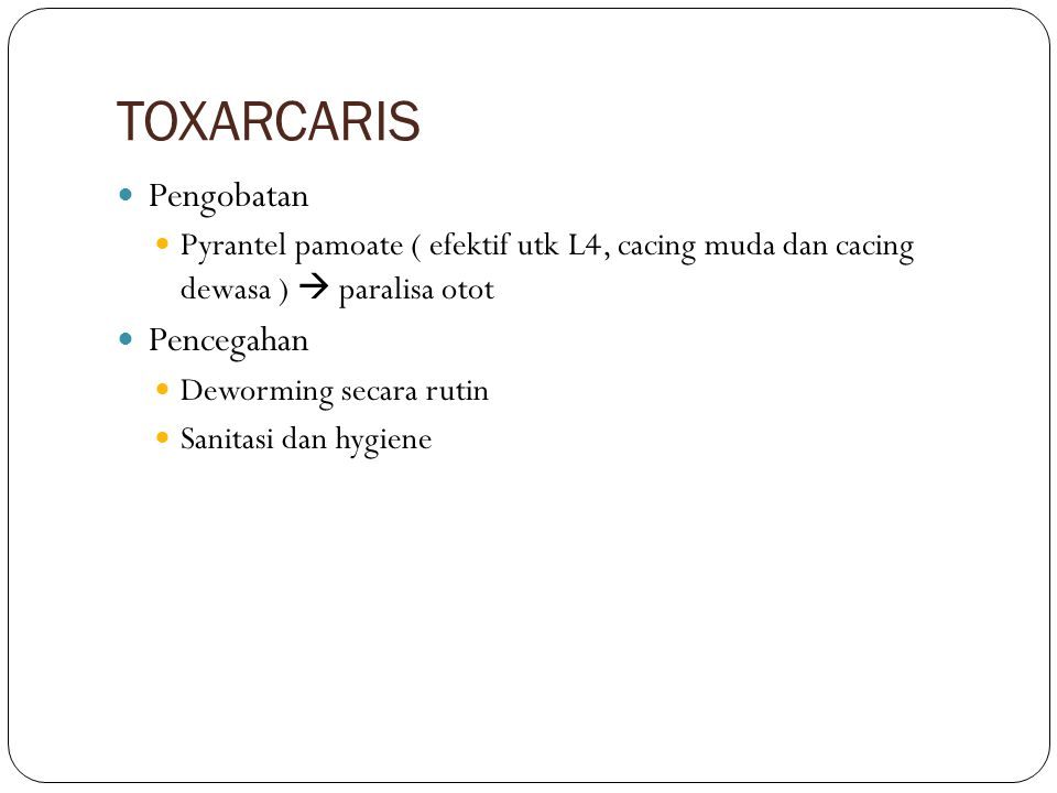 TOXARCARIS Pengobatan Pencegahan