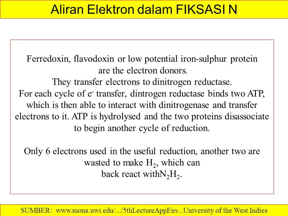 Aliran Elektron dalam FIKSASI N