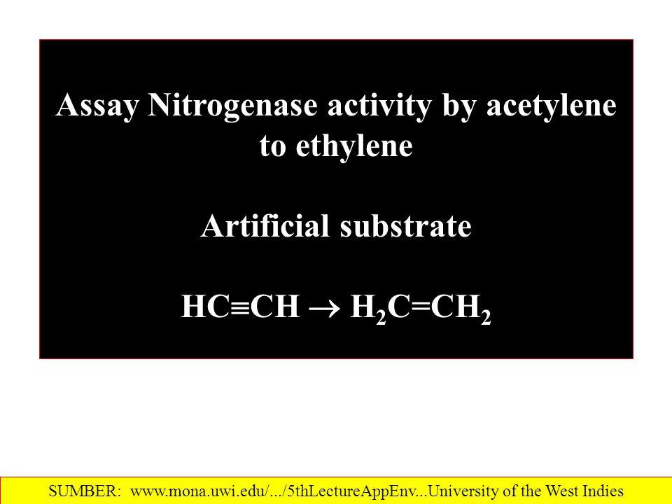Assay Nitrogenase activity by acetylene to ethylene